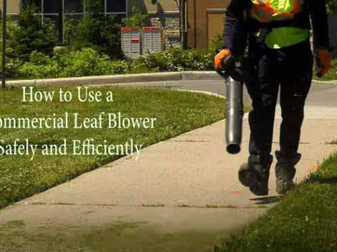 How to Use a Commercial Leaf Blower