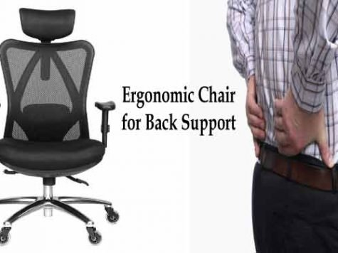 best ergonomic home office chair